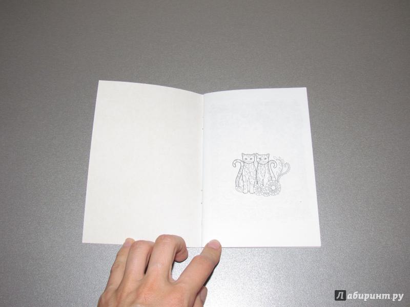 Иллюстрация 4 из 9 для Котики. Блокнот-раскраска ...
