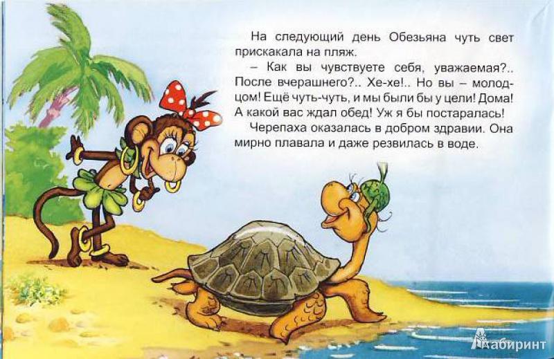 Иллюстрация 14 из 25 для Обезьяна и черепаха - С. Рунге   Лабиринт - книги. Источник: Мила