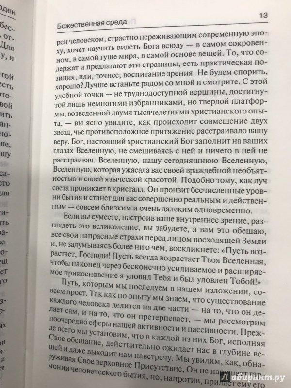 Иллюстрация 21 из 31 для Феномен человека. Божественная среда - Тейяр де Шарден | Лабиринт - книги. Источник: Hello