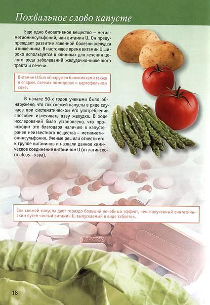 Иллюстрация 3 из 23 для Капуста в натуральном питании - Людмила Потемкина   Лабиринт - книги. Источник: OOlga