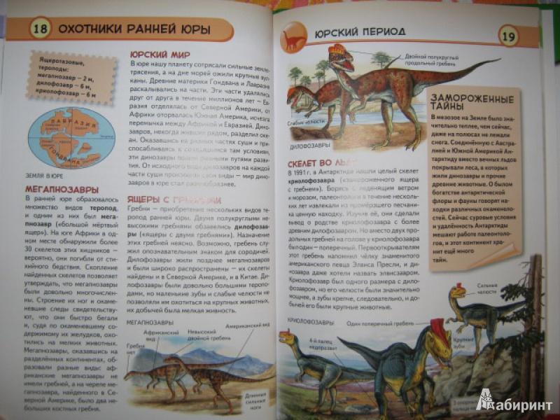 Иллюстрация 8 из 34 для Динозавры. Ящеры мезозойской эры - Юлия Школьник | Лабиринт - книги. Источник: Евгения39
