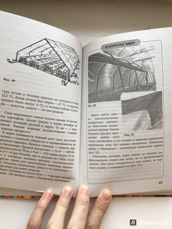 Иллюстрация 18 из 22 для Секреты урожайной теплицы - Николай Курдюмов | Лабиринт - книги. Источник: Овчинникова  Алена