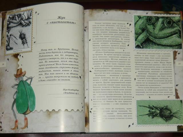 Иллюстрация 80 из 106 для Письма насекомых - Ольга Кувыкина | Лабиринт - книги. Источник: Ромашка:-)