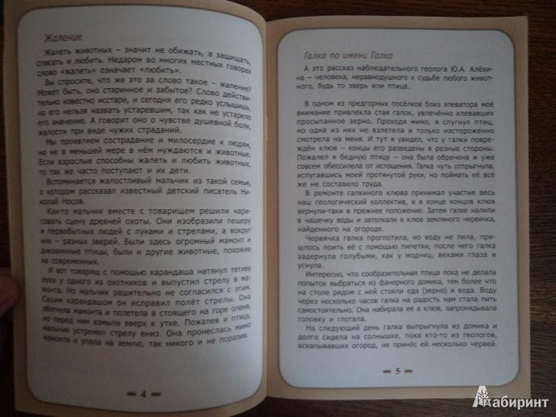 Иллюстрация 5 из 10 для Сострадание к животным - Белевцева, Жданова | Лабиринт - книги. Источник: Karfagen