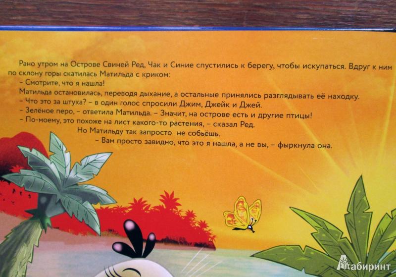 Иллюстрация 10 из 15 для Тайна зеленой птицы - Тапани Багге | Лабиринт - книги. Источник: Зеленая шляпа