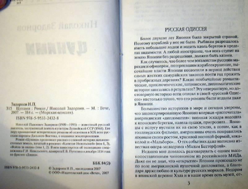 Иллюстрация 1 из 3 для Цунами - Николай Задорнов | Лабиринт - книги. Источник: Мефи