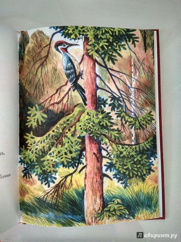 Иллюстрация 26 из 28 для Моя мама - Лермонтов, Черный, Фет   Лабиринт - книги. Источник: Атаманов  Андрей