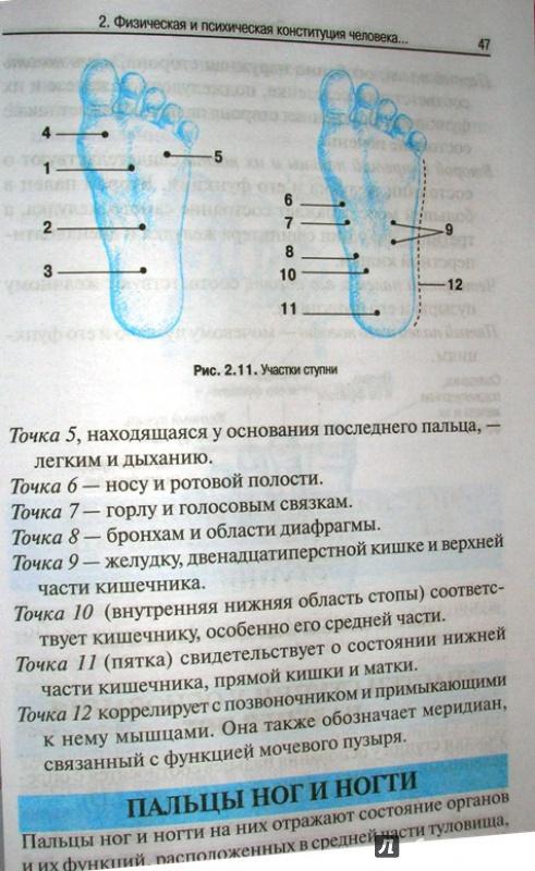 Иллюстрация 7 из 16 для Руководство по восточной диагностике - Мишио Куши | Лабиринт - книги. Источник: Beloschka