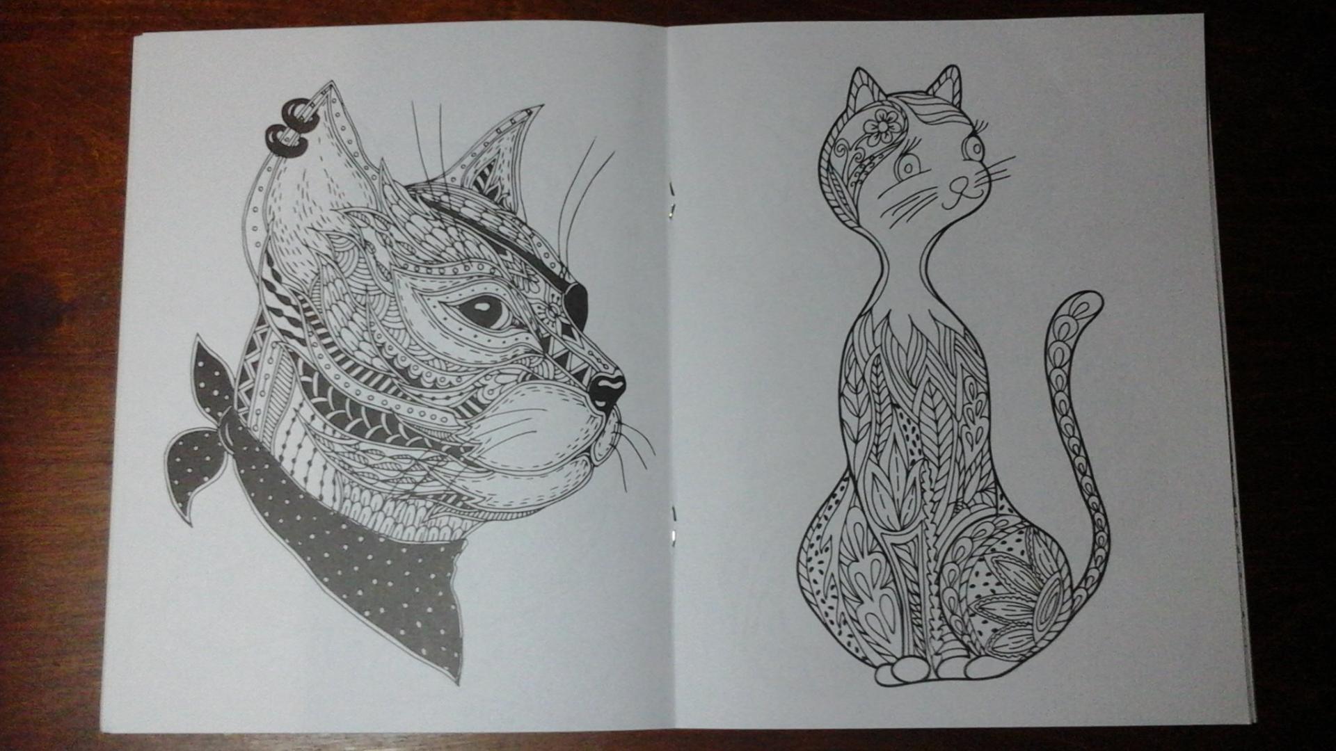 Иллюстрация 8 из 9 для Cats-2. Творческая раскраска ...
