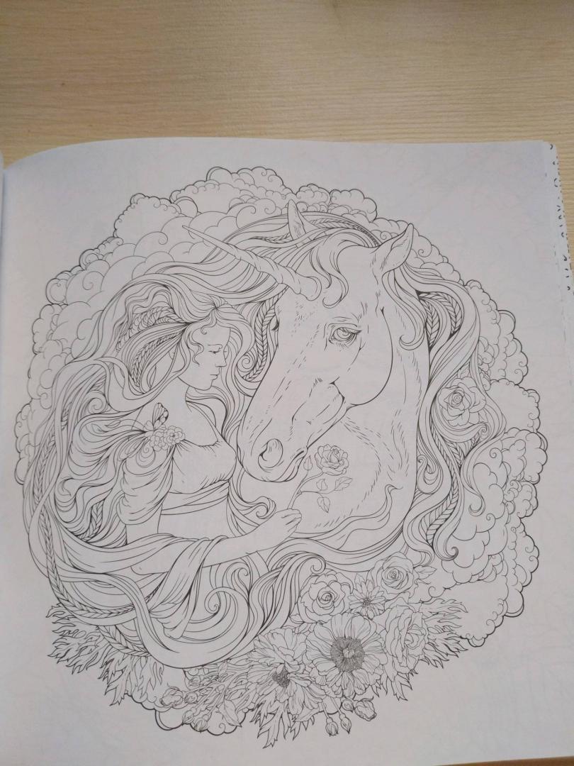 Иллюстрация 28 из 41 для Единороги. Раскраска-антистресс ...