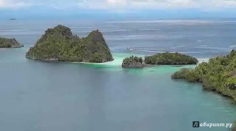 Иллюстрация 1 из 10 для Папуа: секретный остров каннибалов 3D (Blu-Ray) - Питер Лорд   Лабиринт - Источник: noname