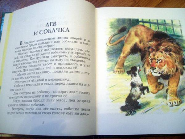 Иллюстрация 3 из 39 для Лев и собачка: Рассказы русских ...