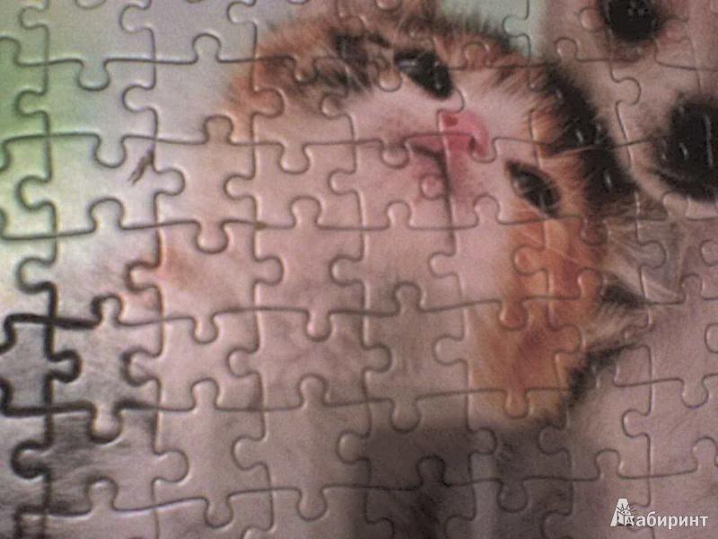 """Иллюстрация 3 из 6 для Puzzle, 500 элементов, """"Щенок и котенок"""" (B-51687)   Лабиринт - игрушки. Источник: Роза с шипами"""