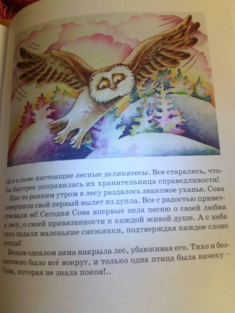 Иллюстрация 6 из 8 для Хранительница справедливости. Сказка про Сову из сказочного леса - Марина Челик | Лабиринт - книги. Источник: Светлячок:)