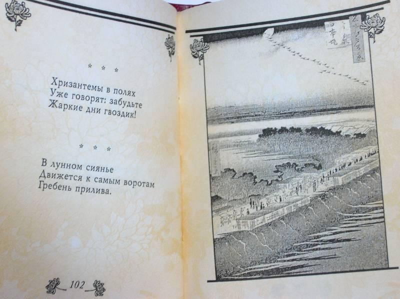 Иллюстрация 5 из 8 для Лед на хризантемах: Хокку | Лабиринт - книги. Источник: Качура Светлана Анатольевна