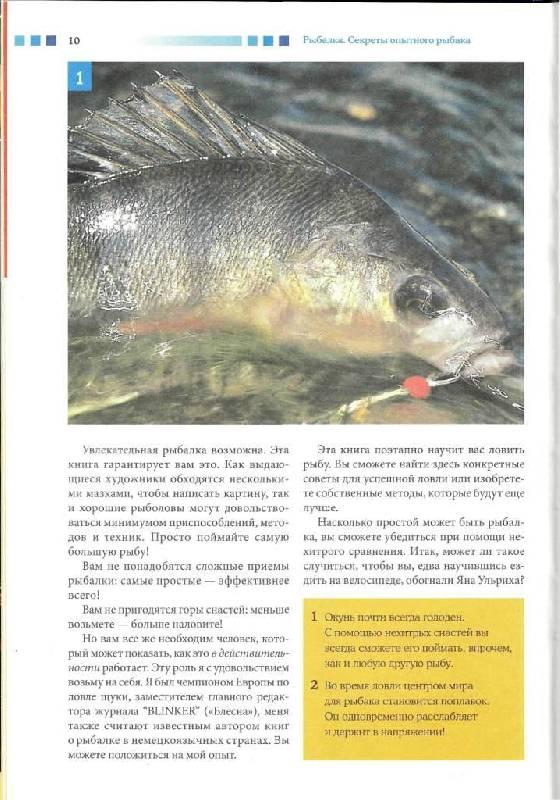 Иллюстрация 5 из 15 для Рыбалка. Секреты опытного рыбака - Мартин Верле | Лабиринт - книги. Источник: Юта