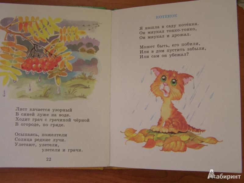 Рисунки к стихотворению котенок благининой