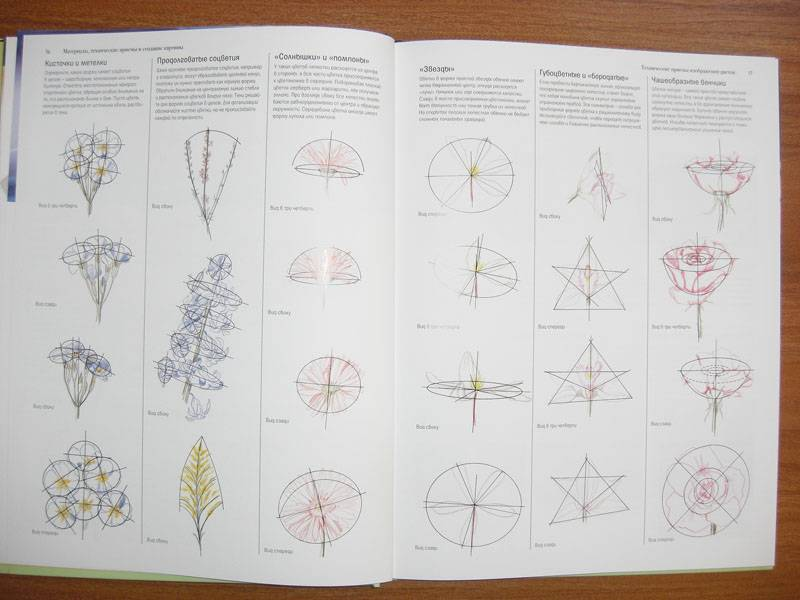 Иллюстрация 9 из 20 для Акриловая живопись. Рисуем цветы - Лекси Санделл | Лабиринт - книги. Источник: Gradara