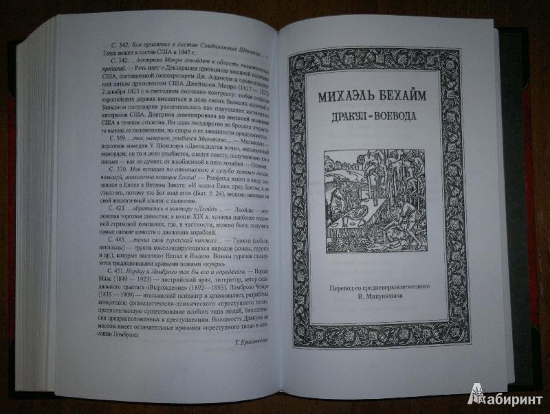 Иллюстрация 12 из 43 для Дракула - Брэм Стокер | Лабиринт - книги. Источник: Спящая на ходу