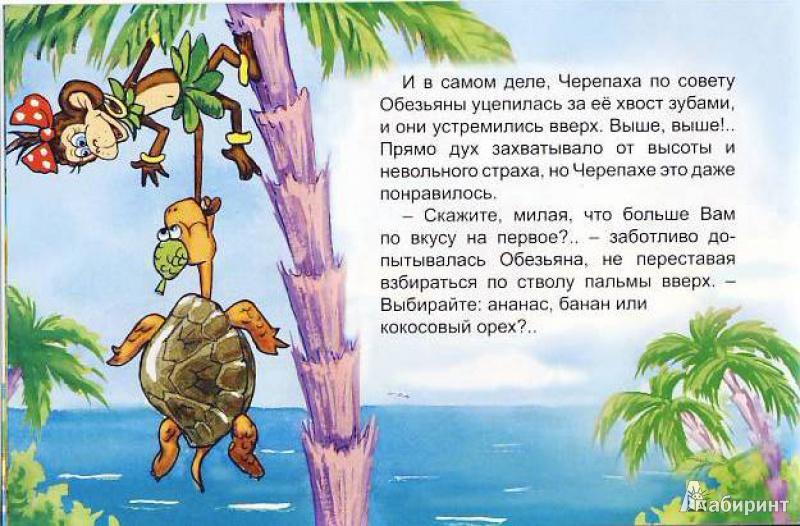 Иллюстрация 10 из 25 для Обезьяна и черепаха - С. Рунге | Лабиринт - книги. Источник: Мила