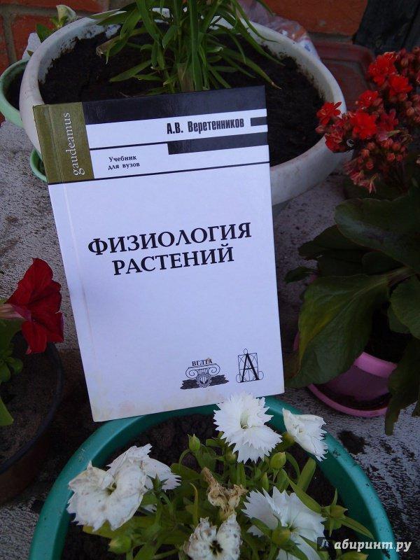 Иллюстрация 39 из 42 для Физиология растений. Учебник - Анатолий Веретенников   Лабиринт - книги. Источник: zuzu2511