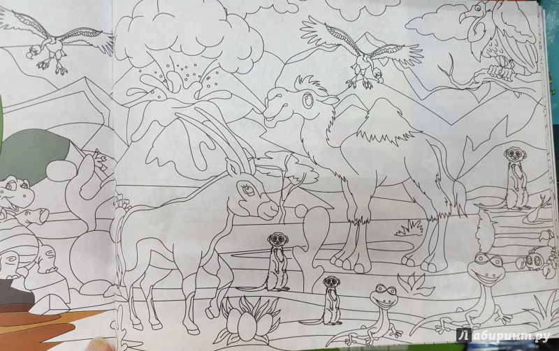 Раскраска спрятанные животные