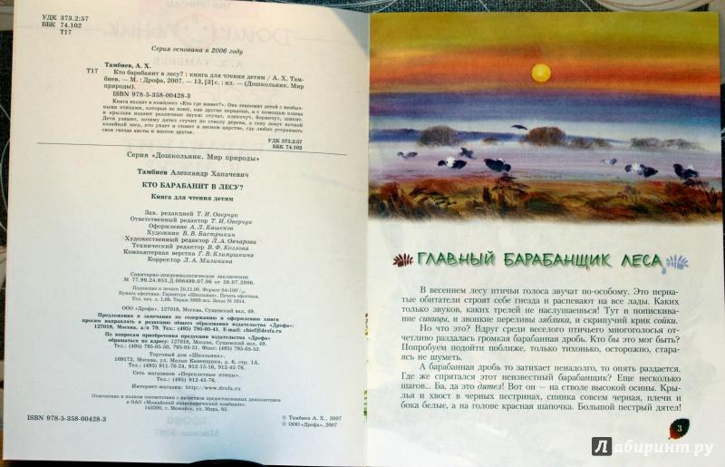 Иллюстрация 11 из 25 для Кто барабанит в лесу? Книга для чтения детям - Александр Тамбиев | Лабиринт - книги. Источник: E.B.