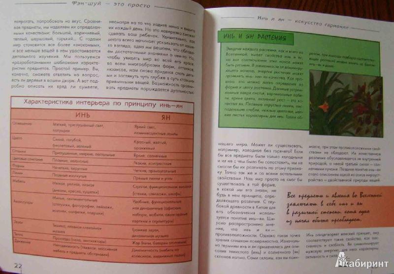 Иллюстрация 1 из 5 для Фэн-шуй. Дом и сад - Юлия Фомина | Лабиринт - книги. Источник: Easy