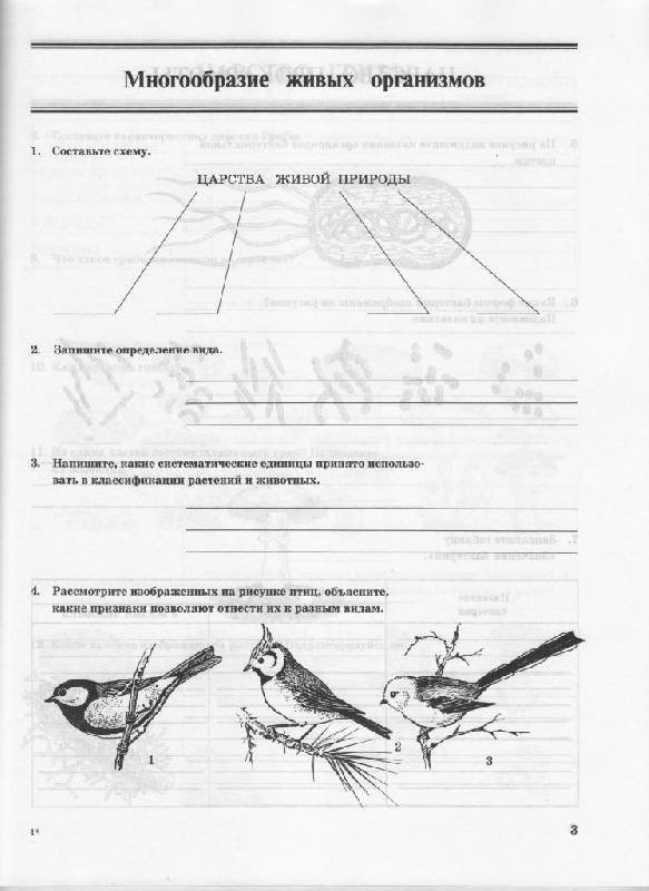 Иллюстрация 1 из 3 для Биология. Многообразие живых организмов. 7 класс - Захаров, Сонин | Лабиринт - книги. Источник: Наталья'