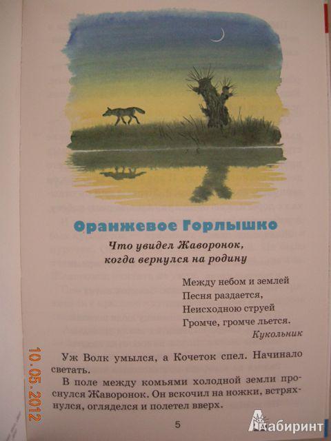 Иллюстрация 21 из 25 для Тайна ночного леса - Виталий Бианки | Лабиринт - книги. Источник: Honeyed