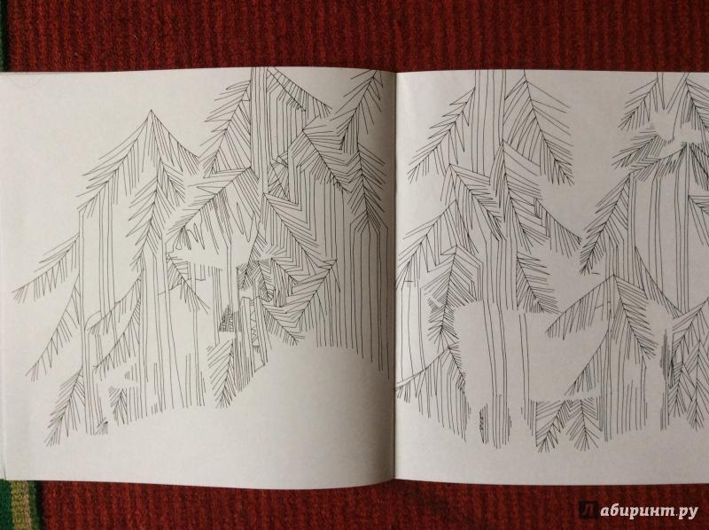 Иллюстрация 15 из 27 для Раскраска. Прятки-загадки ...