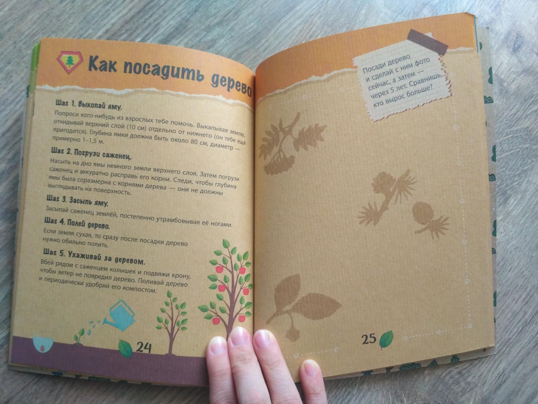 Иллюстрация 4 из 11 для Спасти лес! | Лабиринт - книги. Источник: Чертухина  Лиана