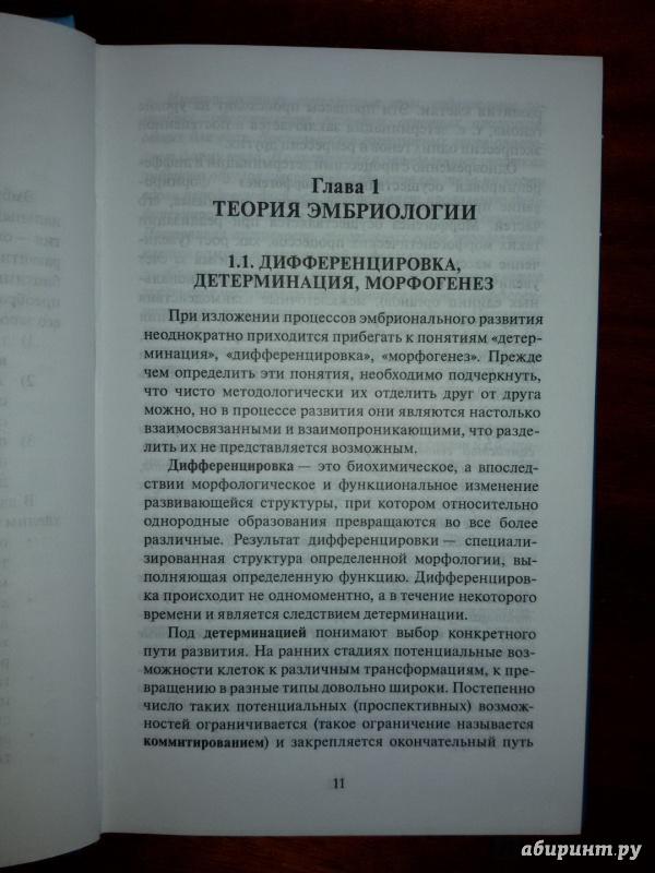 Иллюстрация 6 из 37 для Эмбриология. Учебное пособие - Студеникина, Слука   Лабиринт - книги. Источник: olegiv