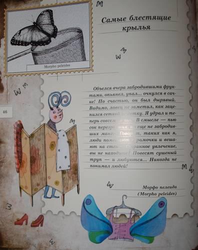 Иллюстрация 37 из 106 для Письма насекомых - Ольга Кувыкина   Лабиринт - книги. Источник: Наталья Бухтиярова