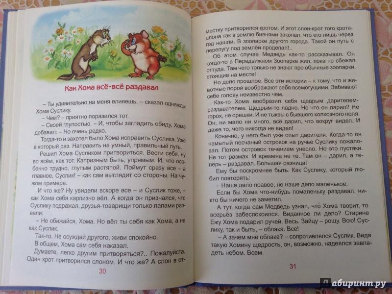 Иллюстрация 7 из 22 для Солнечный зайчик Хомы и Суслика - Альберт Иванов | Лабиринт - книги. Источник: ХК