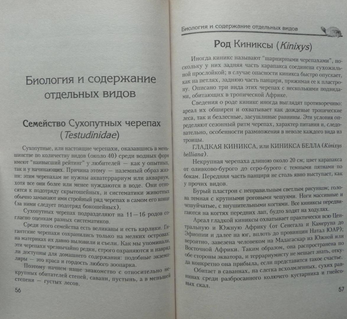 Иллюстрация 8 из 17 для Сухопутные черепахи. Содержание. Разведение. Кормление. Лечение заболеваний - Александр Чегодаев | Лабиринт - книги. Источник: SiB