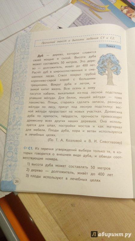 Иллюстрация 4 из 5 для Метапредметная диагностическая работа. 2 класс. Типовые задания. ФГОС - Елена Языканова | Лабиринт - книги. Источник: Серова  Мария