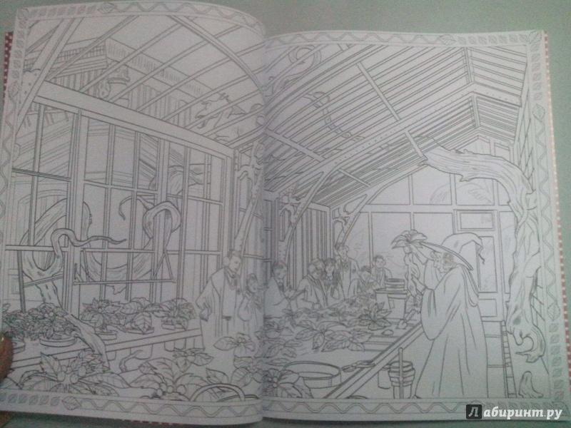 Иллюстрация 17 из 60 для Гарри Поттер. Волшебники и где их ...