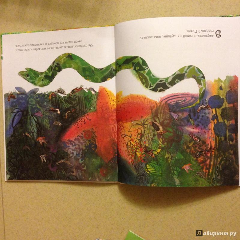 Иллюстрация 8 из 20 для Праздник в джунглях - Брайан Уайлдсмит | Лабиринт - книги. Источник: Азизова  Екатерина