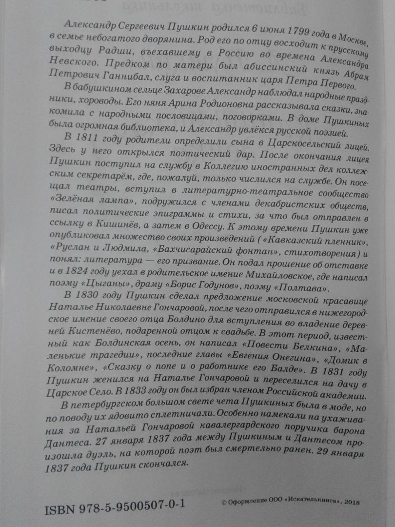 Иллюстрация 11 из 14 для Капитанская дочка - Александр Пушкин | Лабиринт - книги. Источник: Прудаева  Анастасия Александровна