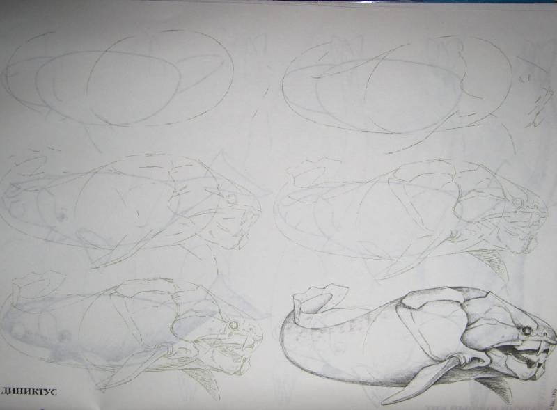 Иллюстрация 19 из 29 для Рисуем 50 акул, китов и других морских животных - Эймис, Бадд | Лабиринт - книги. Источник: Спанч Боб