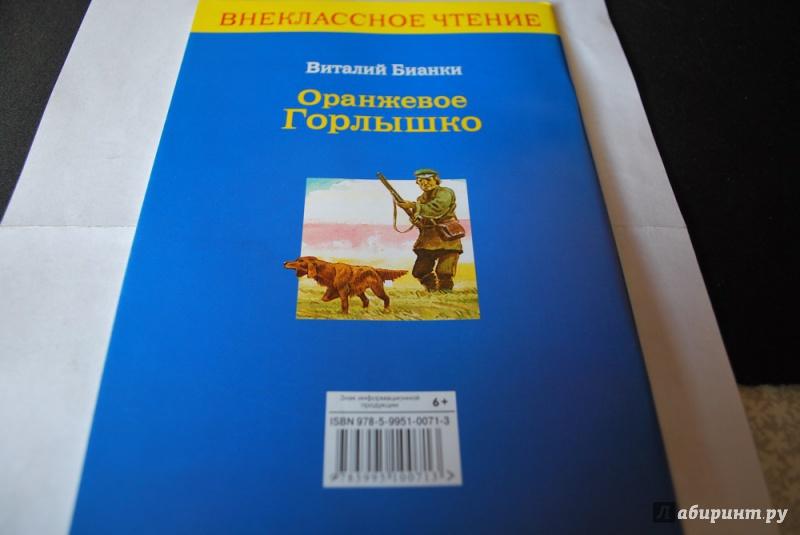 Иллюстрация 4 из 10 для Оранжевое Горлышко - Виталий Бианки | Лабиринт - книги. Источник: Журавлёва  Анна