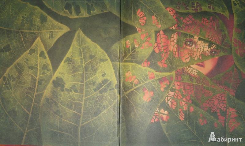 Иллюстрация 1 из 51 для Гербарий фей - Лакомб, Перез | Лабиринт - книги. Источник: Ромашка:-)