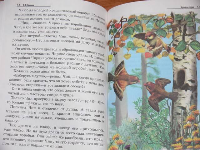 Иллюстрация 6 из 19 для Лесные домишки - Виталий Бианки   Лабиринт - книги. Источник: Irbis