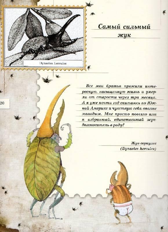 Иллюстрация 97 из 106 для Письма насекомых - Ольга Кувыкина | Лабиринт - книги. Источник: Zhanna