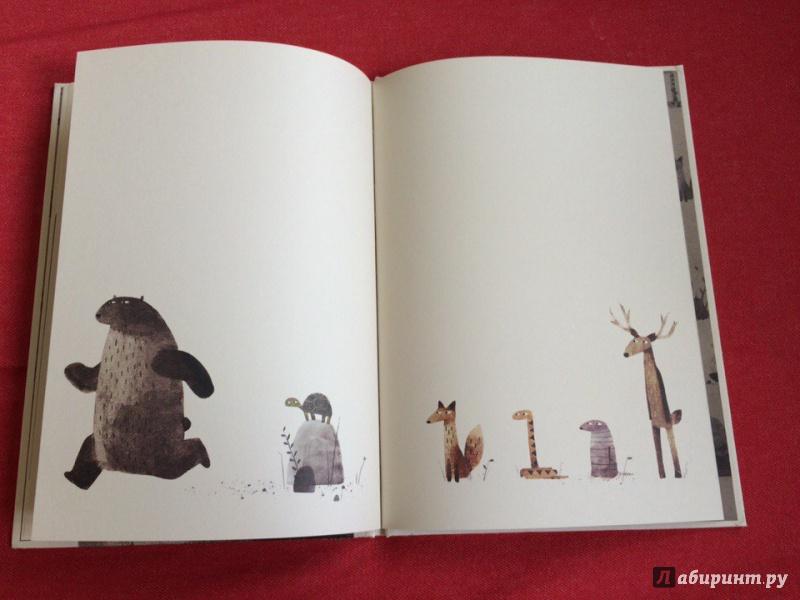 Иллюстрация 19 из 23 для Где моя шапка? - Джон Классен | Лабиринт - книги. Источник: Сан Санна
