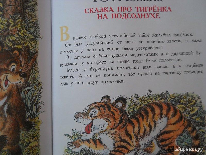 запросу сказка про тигренка с картинками видела фото