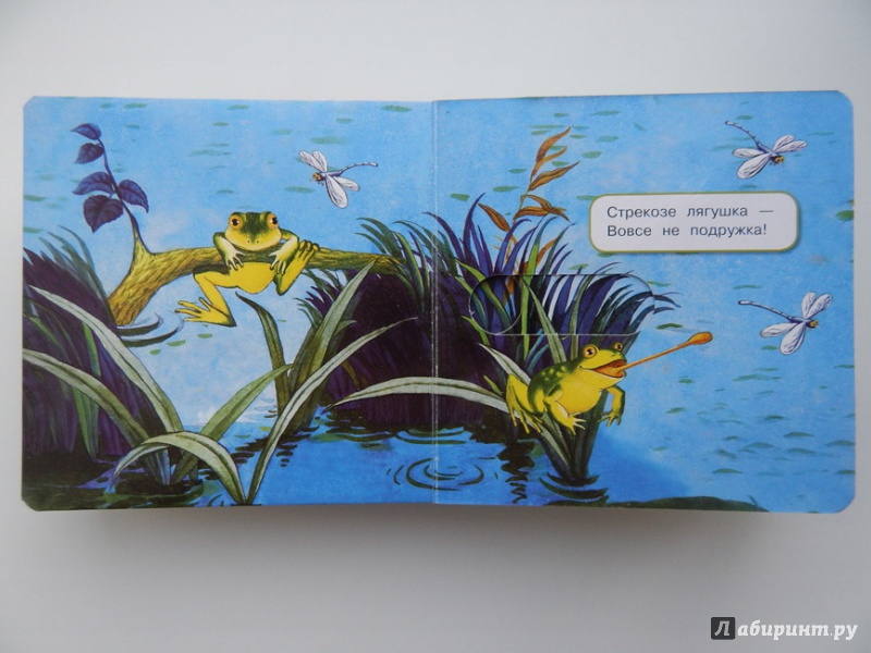 Иллюстрация 32 из 48 для Что у мишки на обед? - Юлия Шигарова   Лабиринт - книги. Источник: Мелкова  Оксана