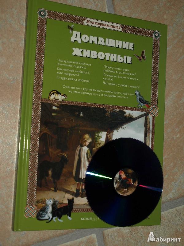 Иллюстрация 18 из 52 для Домашние животные - Светлана Лаврова | Лабиринт - книги. Источник: Гусева  Анна Сергеевна