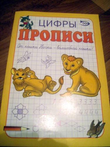 Иллюстрация 1 из 15 для Прописи: Цифры - Полярный, Никольская   Лабиринт - книги. Источник: Galia